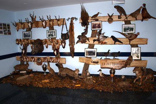 izlozba-lovstva1-530